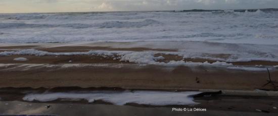 Meerschaum Biarritz