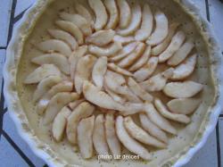 2010-10-24-pie-poulet-tarte-raisins-046.jpg